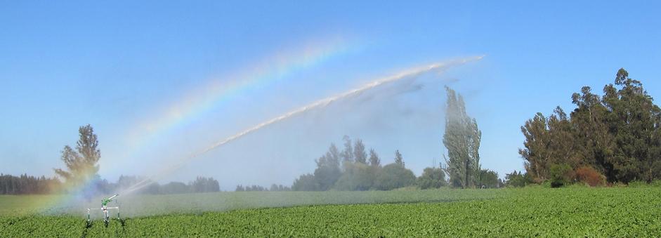 Irrigatore per sito.png