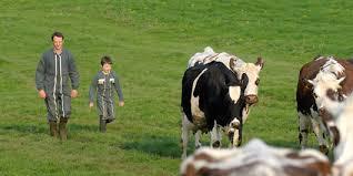 Reprendre ou transmettre au mieux une exploitation agricole : Tout savoir sur la démarche à avoir et