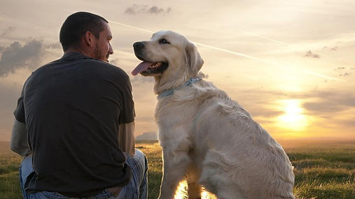Dog sitter Valle Brembana