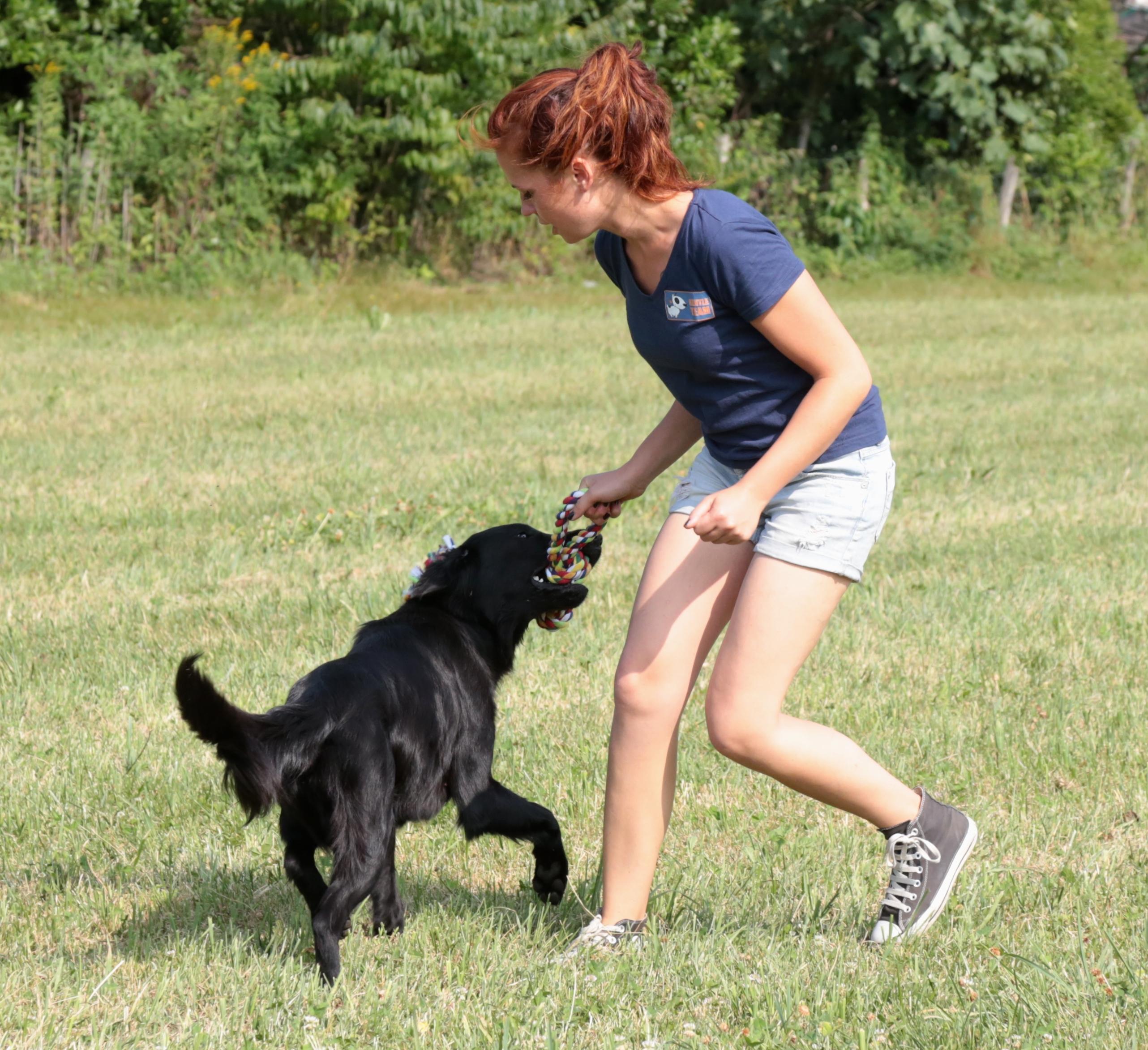 Attività Ricreative con il Cane