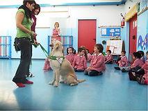 Pet Therapy Scuole Bergamo