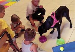 Addestramento Cani Ponteranica