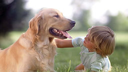 Pet Therapy Bergamo