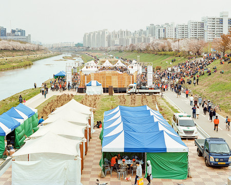 Cherry Blossom Festival, Gwangmyeong, April 2015