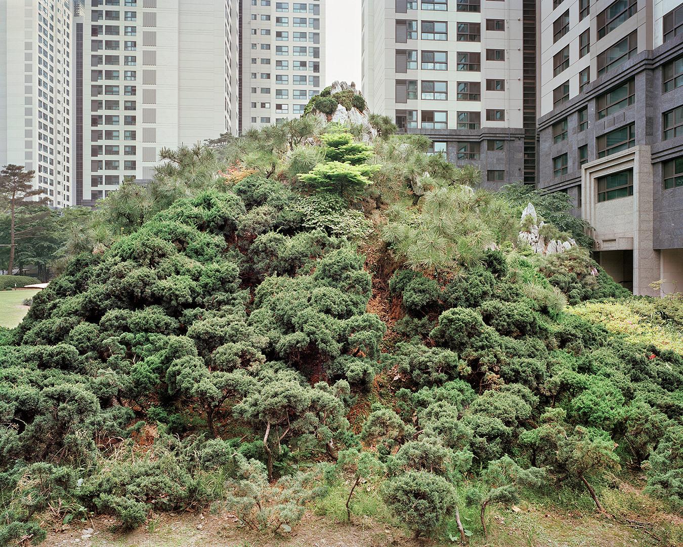 Mt. Seorak 2, Seoul, July 2014