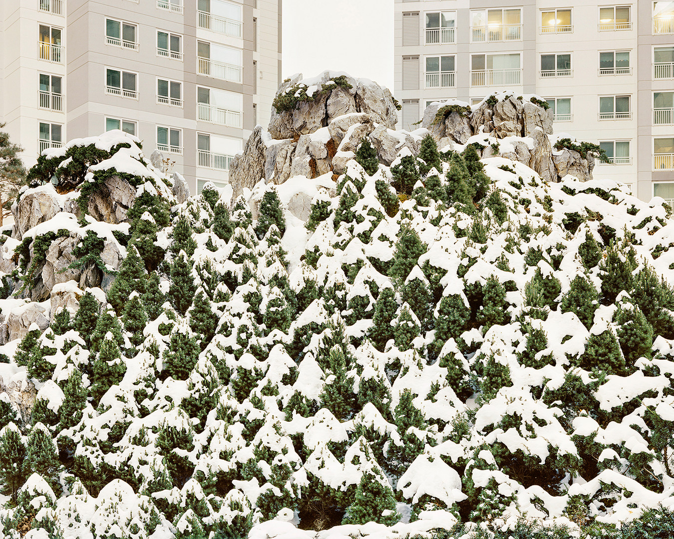Mt. Hwaak 6, Seoul, December 2012