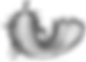 Pluma 7 base, fondo transparente y volte