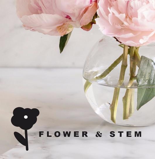 Flower & Stem