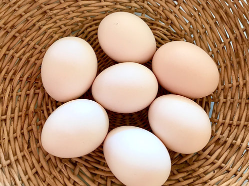 Free-Range Eggs (500g)
