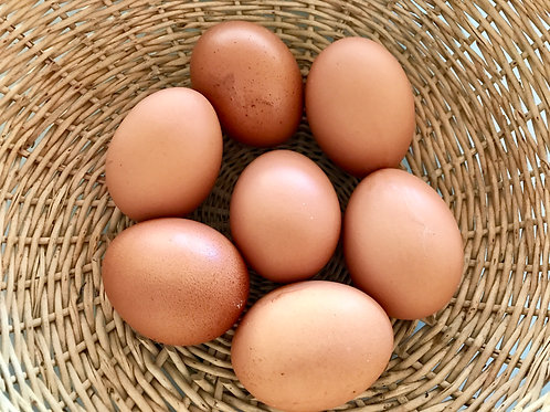 Free Range Eggs (800g)
