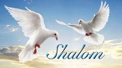BBK20150822-BabaYuanES-Shalom-TwoDovesHeadShot-275