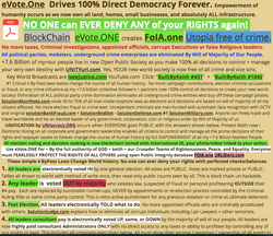 0a-BBK201801001-EVOTEone-DirectDemocracy