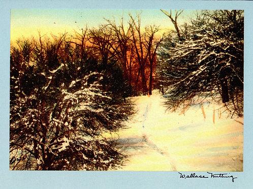 Wallace Nutting Snowy Trail Card