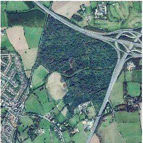 Dartford-site-after.jpg