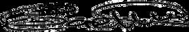 GD Signature Vector Art.png