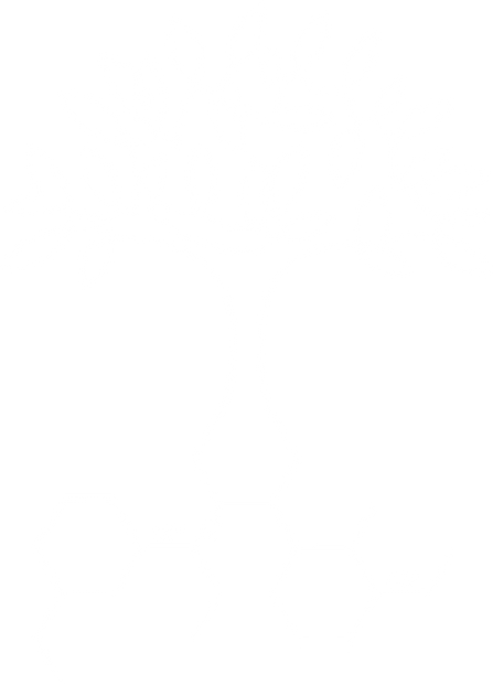Time4Trees Logo.png