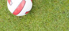 football_on_grass.jpg