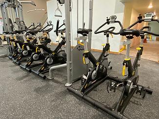 Stone temple bikes.jpeg