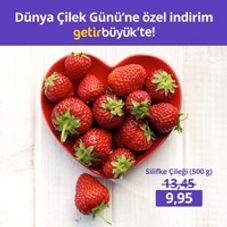 cilek_gunu_post.jpg