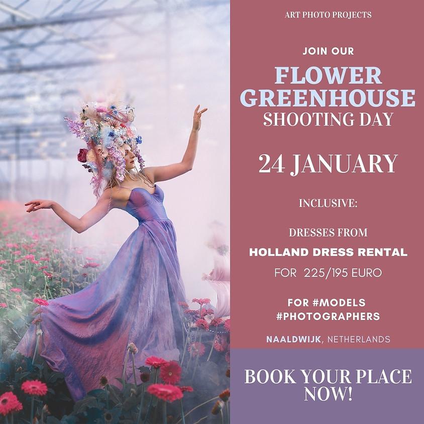 Flower Greenhouse (Gerbera and Curcuma) shooting day