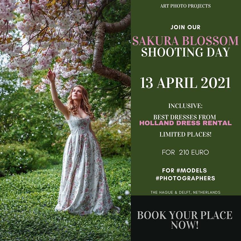 Sakura portfolio shooting day