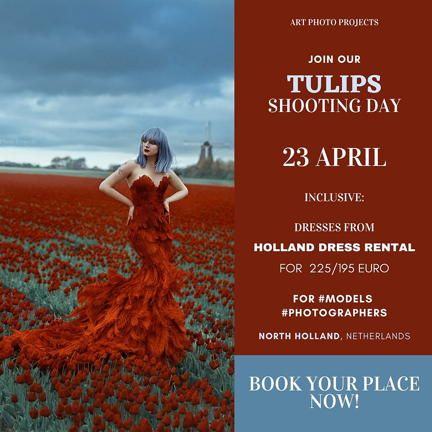 Tulips fields shooting day, April