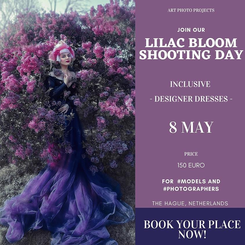 Lilac Bloom portfolio shooting day