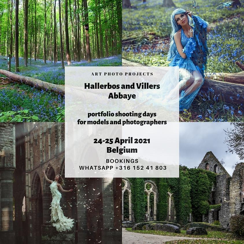 Hallerbos and Villers Abbaye portfolio shooting days, Belgium
