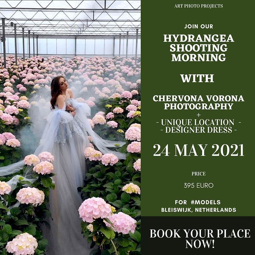 Hydrangea exclusive private photoshoot