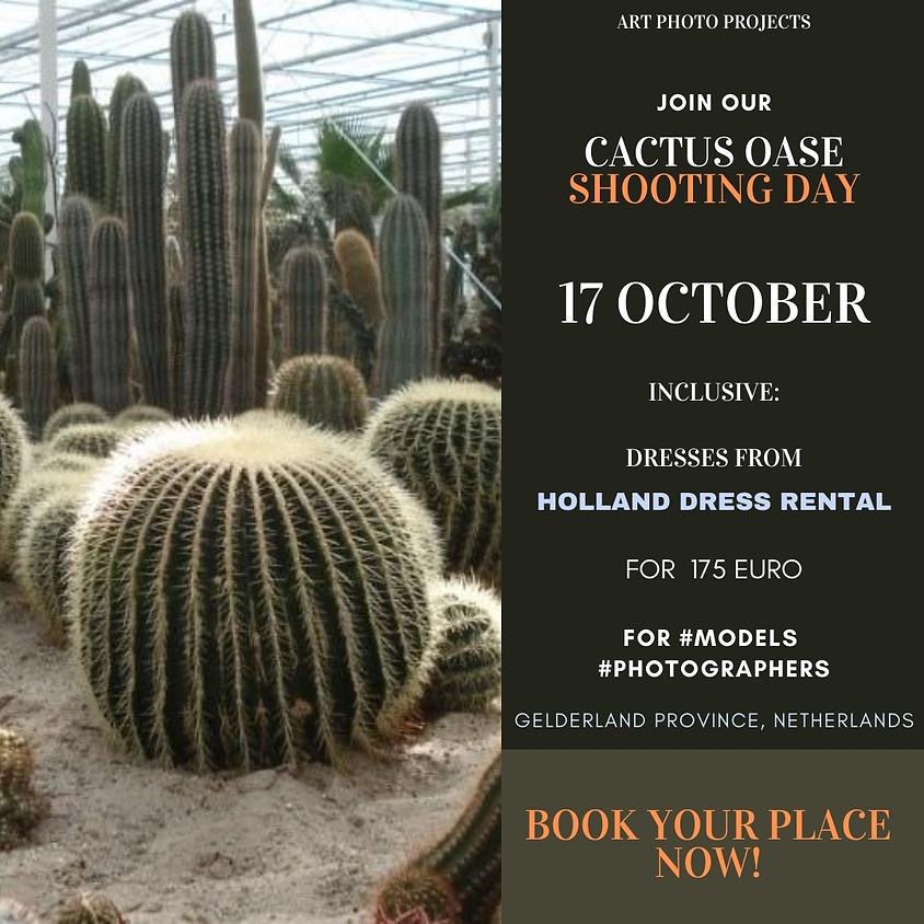 Cactus oasis shooting day