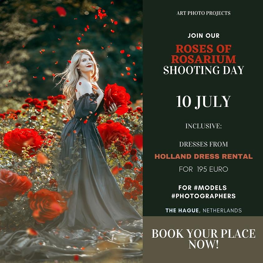 Roses of rosarium shooting day