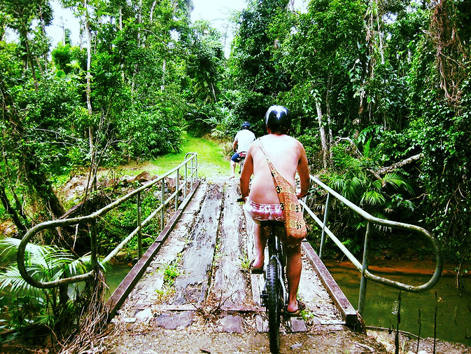 Dunk Island Holidays: Mission Beach Walking And Bicycle Tracks