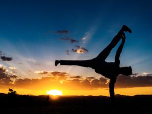 Capoeira or Brazilian Jiu Jitsu?