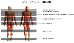 Janda's Upper/Lower Cross Syndrome & the Joint-by-joint model