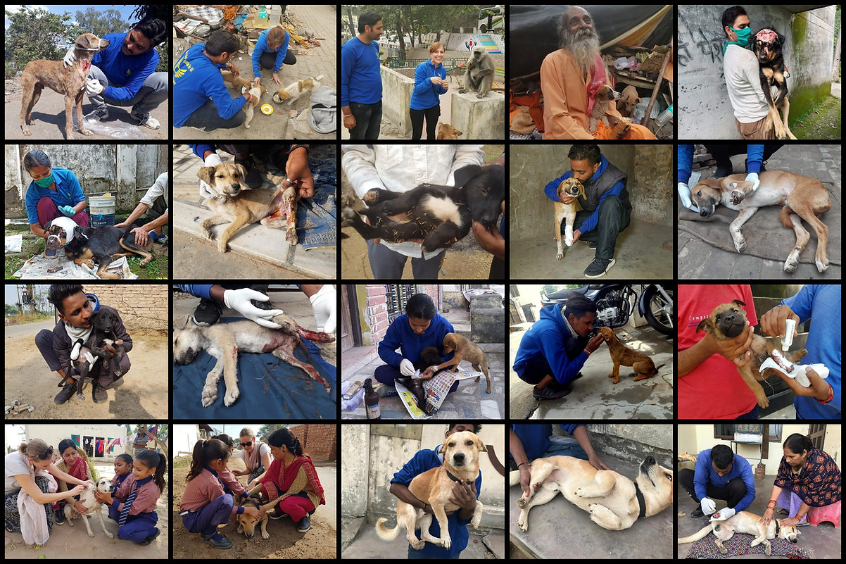 For collage_Rishikesh.jpg