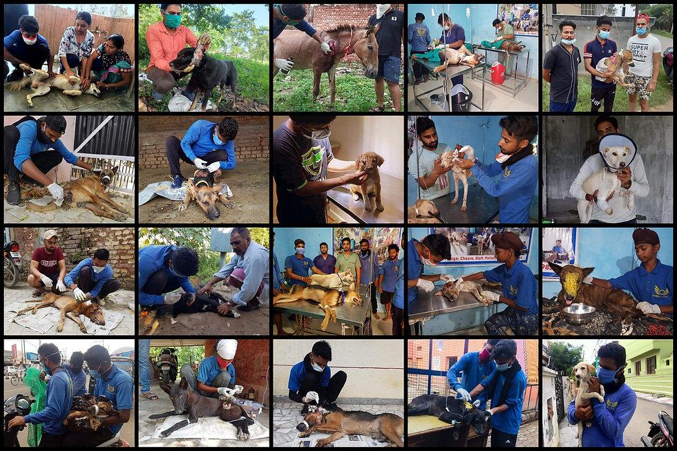For collage_Patiyala.jpg