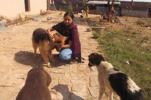 Animal Shelter 5.jpg