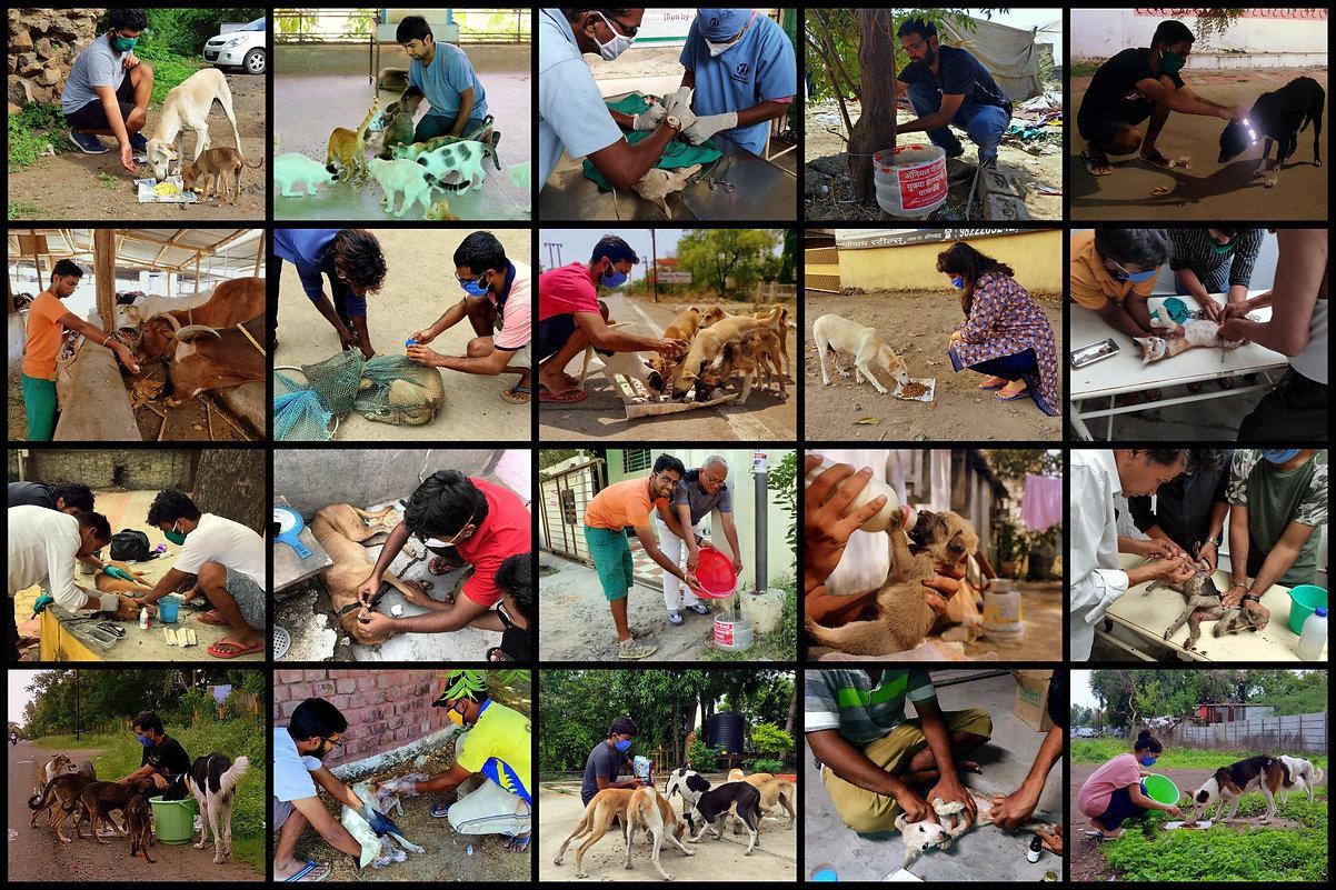 For collage_Aurangabad.jpg