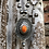 Thumbnail: Navajo pearls with orange spiny oyster pendant and drop Navajo pearl lariat