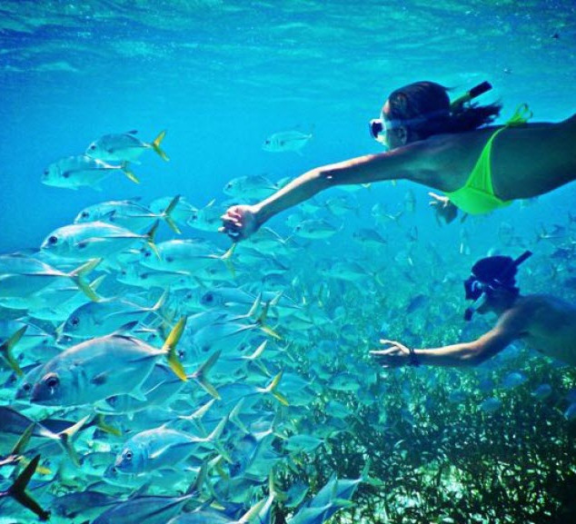 Royal Hawaiian Estate - Water Sports