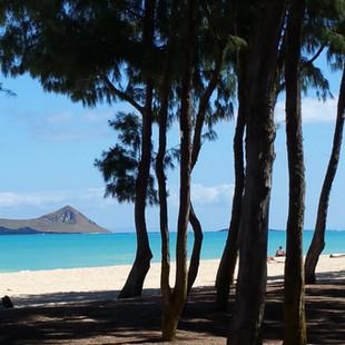 Royal Hawaiian Estate - Waimanalo Beach