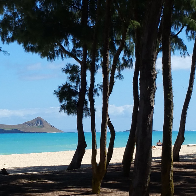Royal Hawaiian Estate - Waimanalo Beach