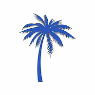 JBC Palm.png