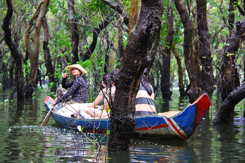 Visiting the Flooded Forest with The Tonle Sap Experience