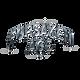 Forsaken Age Logo.png