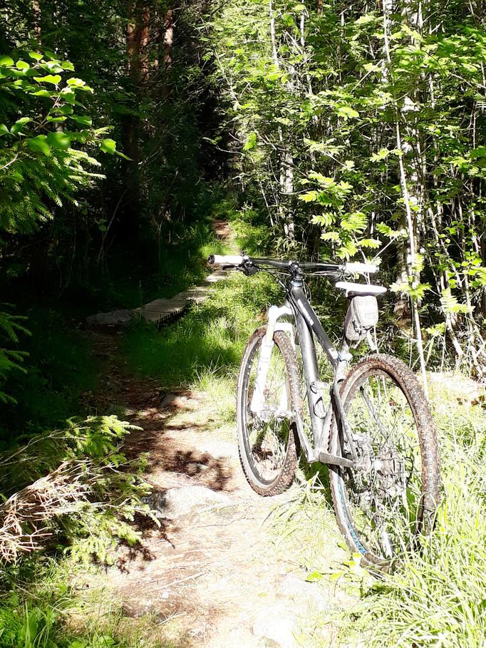 Äntligen cykling igen
