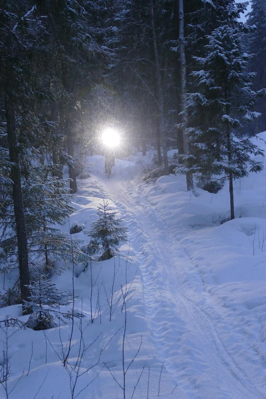 Snöfallet hade gjort stigarna mjuka under dagen