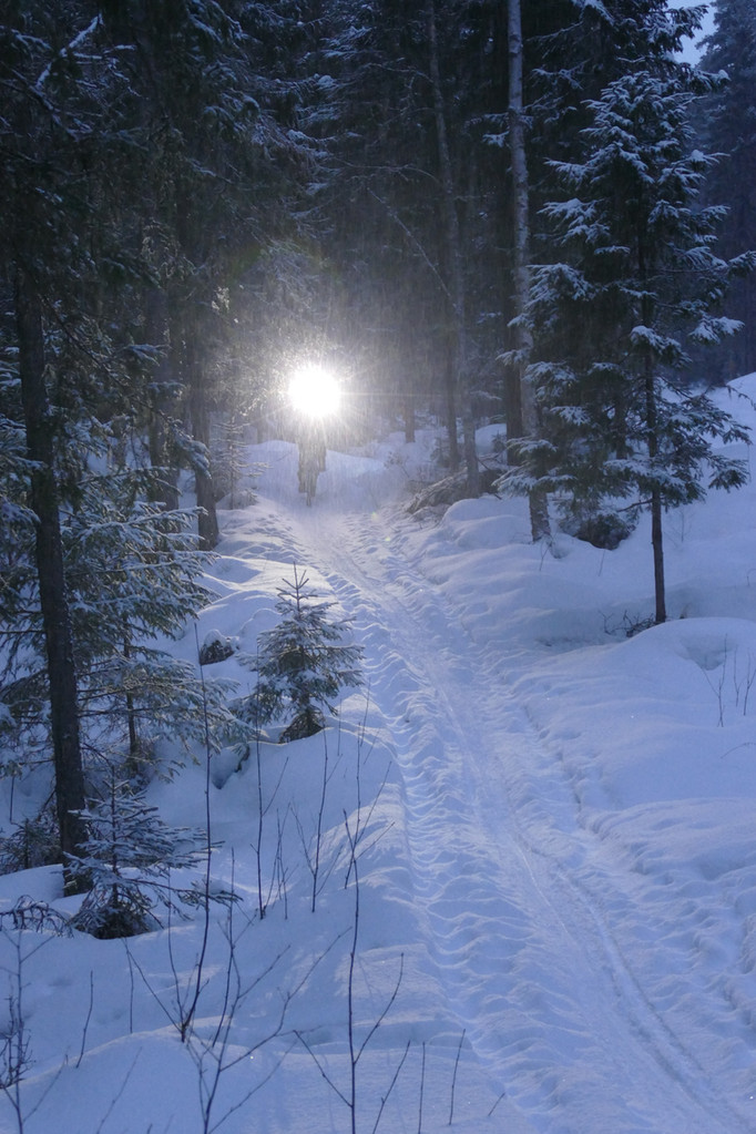 Vintercyklings cup i Vasa