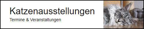 katzenausstellung-banner.jpg