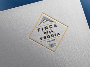 Visual Identity | Packaging | Web Design